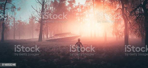 Crash landed ufo with alien walking in the forest picture id516553246?b=1&k=6&m=516553246&s=612x612&h=fm7yqshp87ela agsd4pqmwjnug9rntpbk1uhj91qsk=