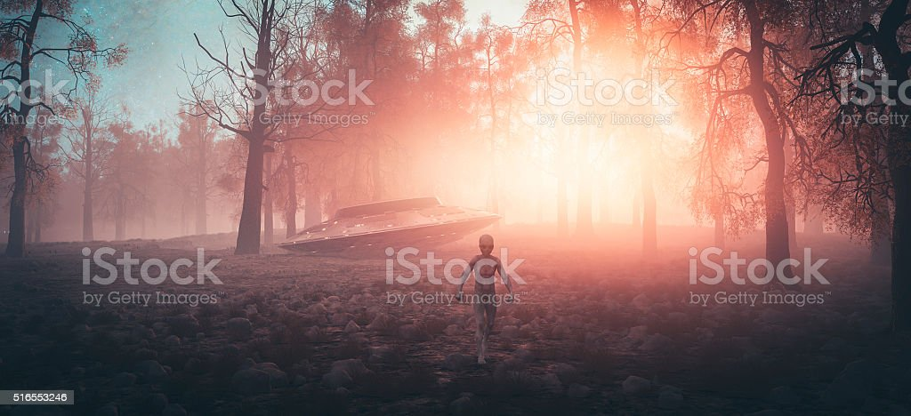 Crash landed UFO with alien walking in the forest stock photo