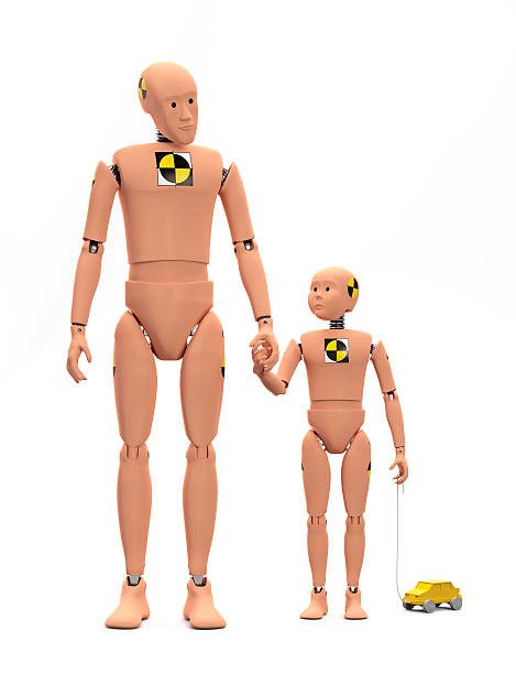 Crash Test Dummies isolated stock photo