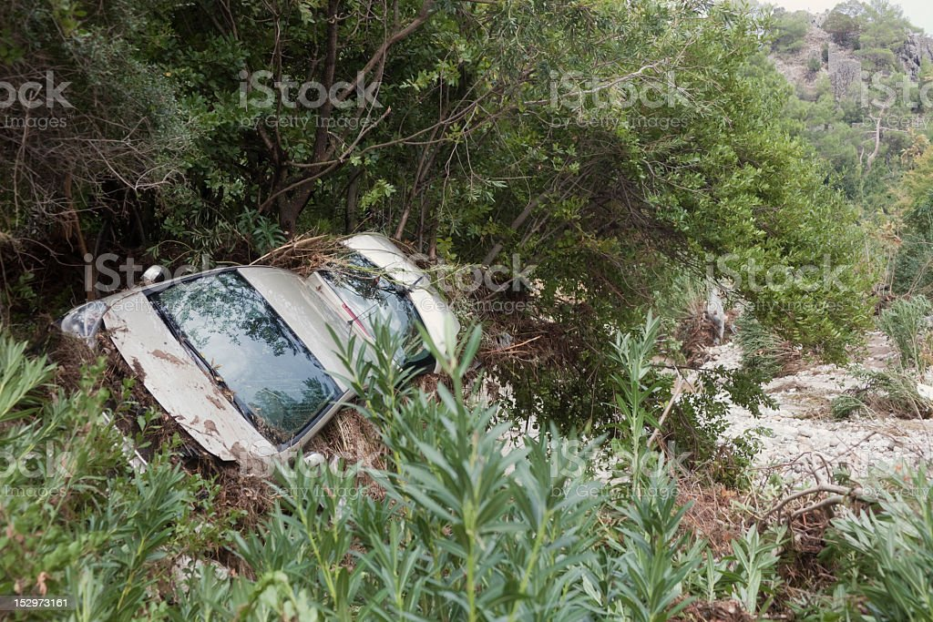 Crashed Vehicle in Plants stock photo
