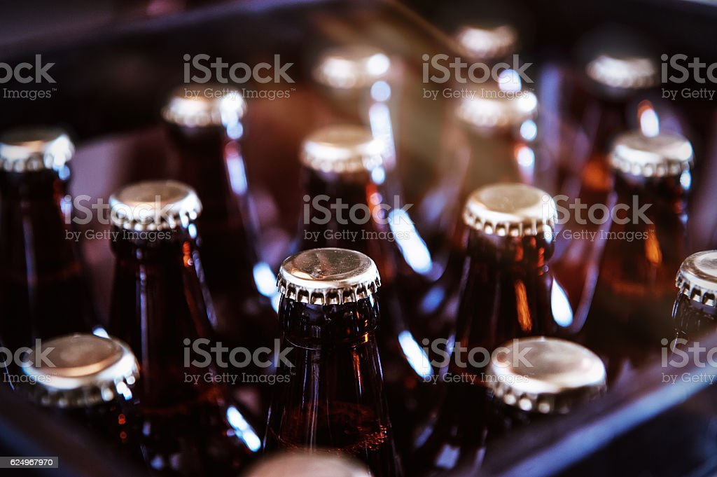 Crate of Freshly Bottled Beer royalty-free stock photo
