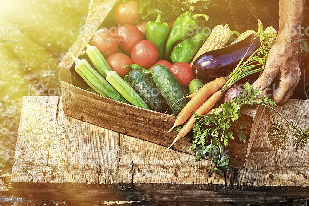 Crate with vegetables stock photo