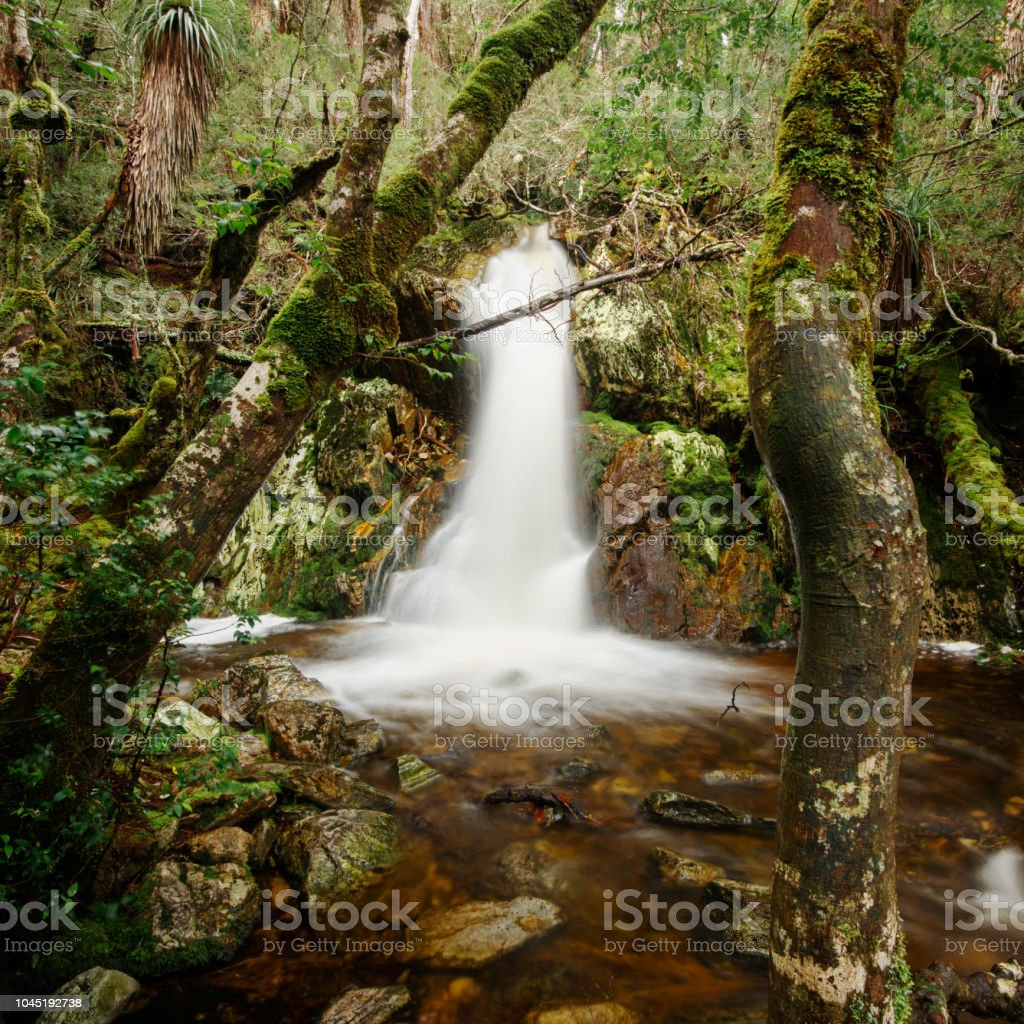 Crater Falls in Cradle Mountain stock photo