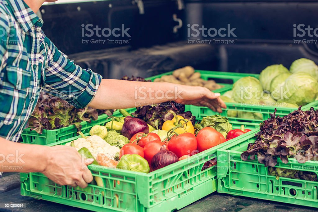 Crates of fresh vegetables – Foto