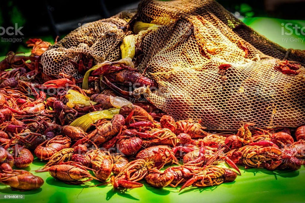 Crawfish 2 stock photo