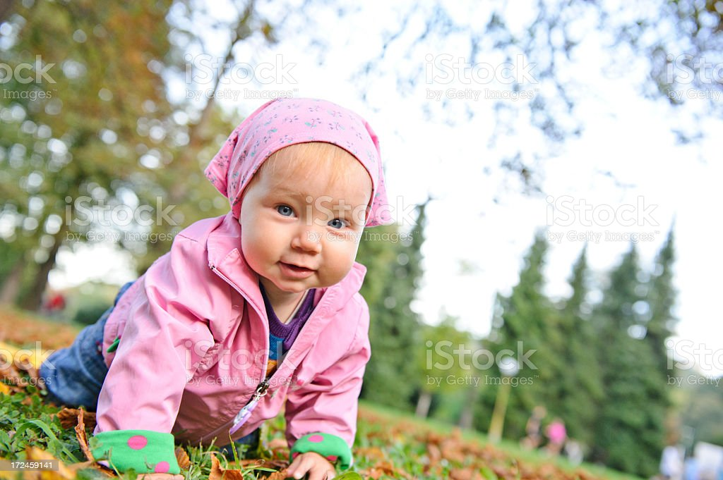 Crawling child royalty-free stock photo