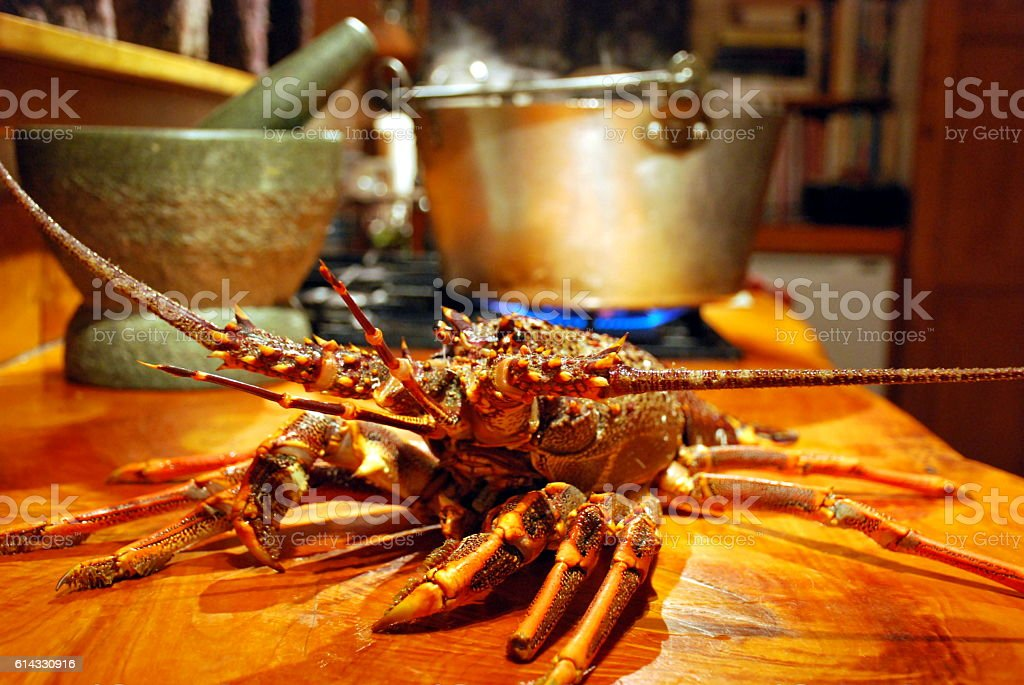 Crayfish (Rock Lobster) and Pot of Boiling Water stock photo