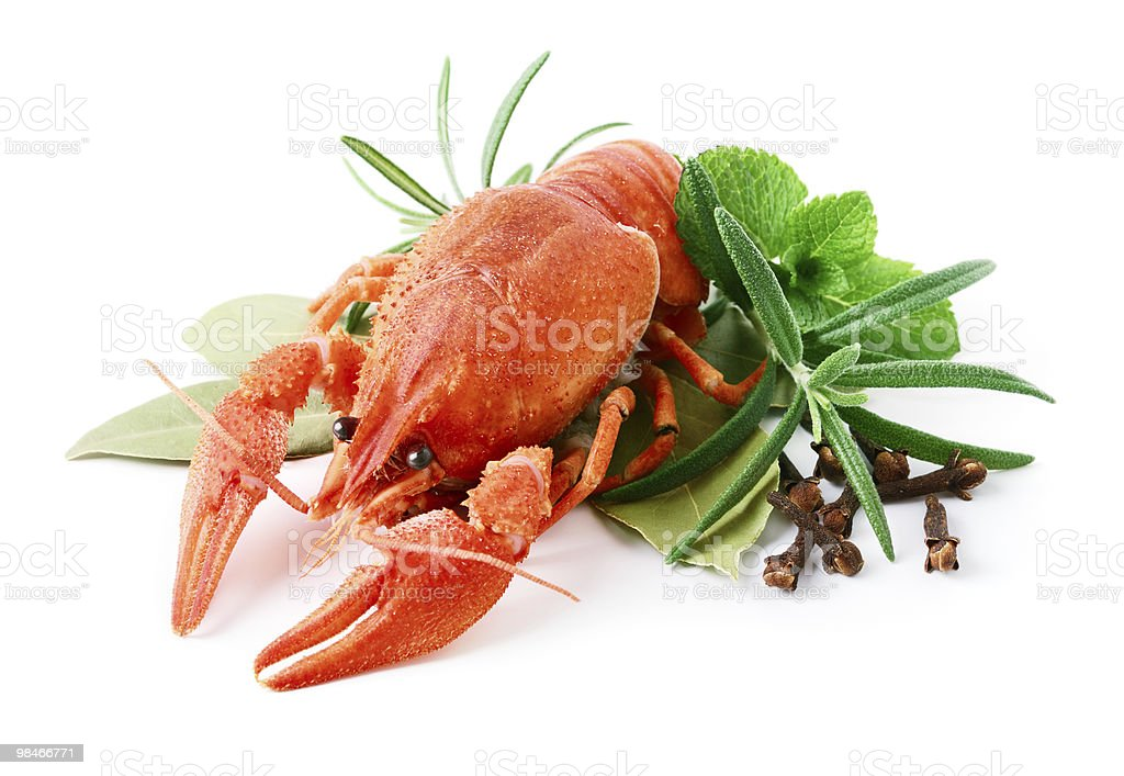 Crayfish and spices royalty-free stock photo