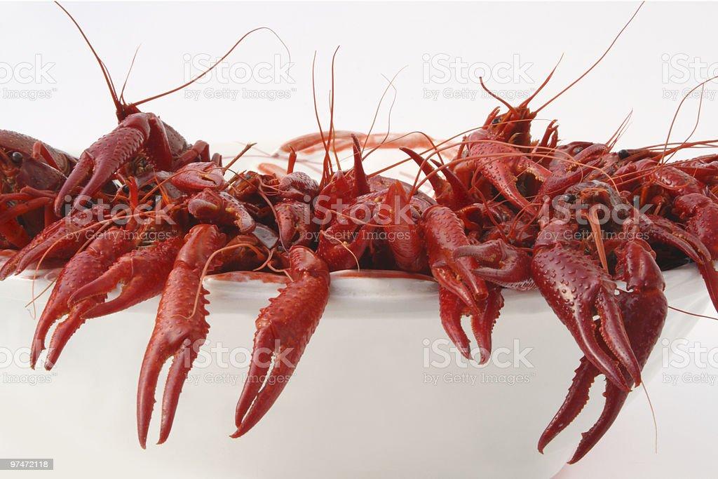 Crayfish cooked stock photo