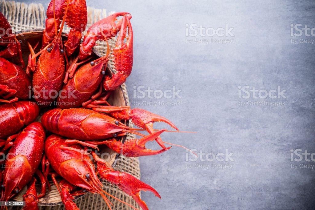 Crayfish. stock photo