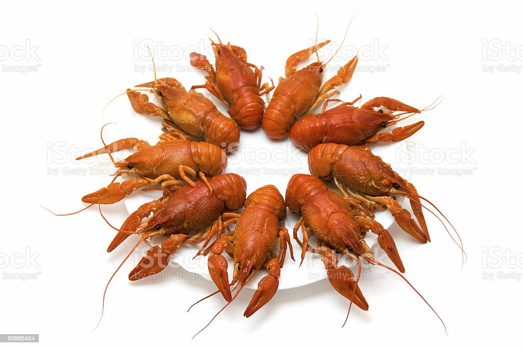 crayfishes on the dish royalty-free stock photo