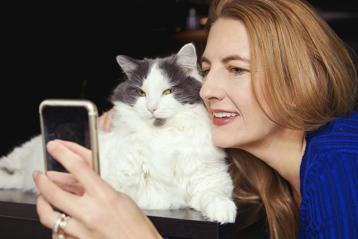Crazy Cat Lady Selfie Stock Photo - Download Image Now