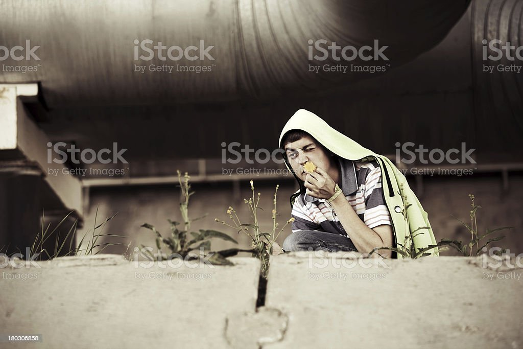 Crazy young man with a flower royalty-free stock photo