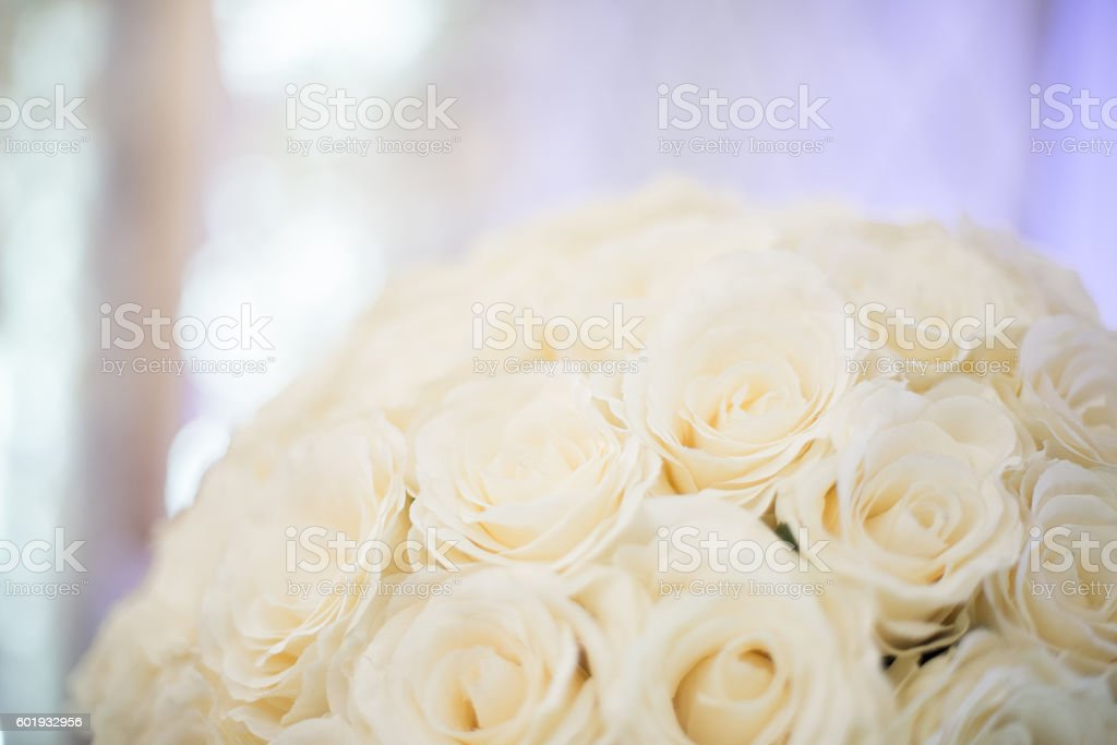 Cream Off White Rose Wedding Bouquet Blurred Background Royalty Free Stock Photo
