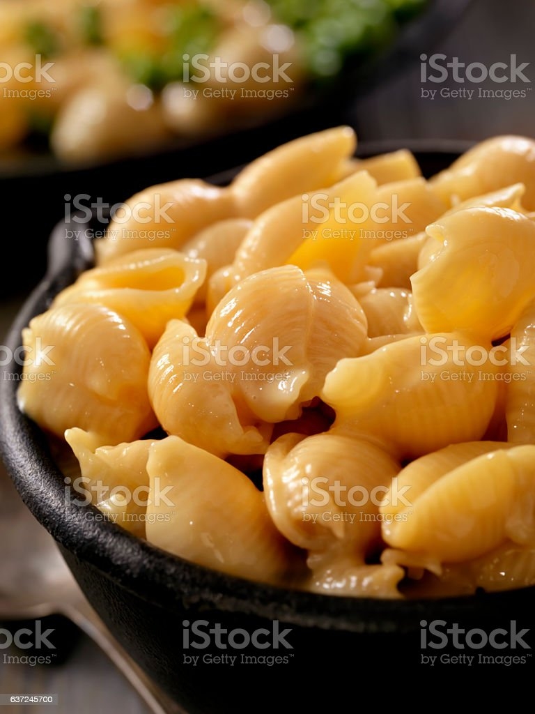 Creamy Shells and Cheese Sauce stock photo