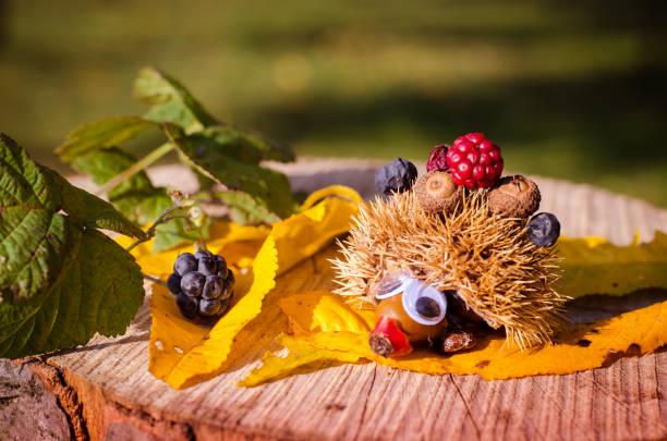 creative autumnal ideas for autumn decorative craft