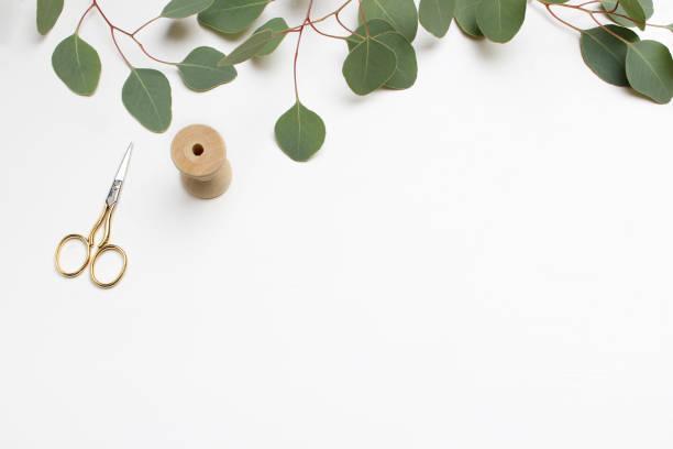 kreative komposition aus der grünen silber dollar eukalyptus cinerea blätter und zweige, goldene schere und hölzerne spule auf weißem hintergrund. feminine hochzeit stil flach legen bild, ansicht von oben - tischdeko goldene hochzeit stock-fotos und bilder