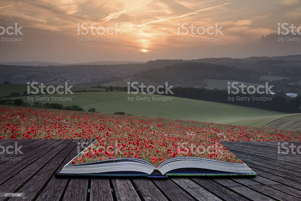 Creative concept pages of book Stunning poppy field landscape royalty-free stock photo