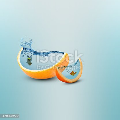 istock creative fish tank background 473923272