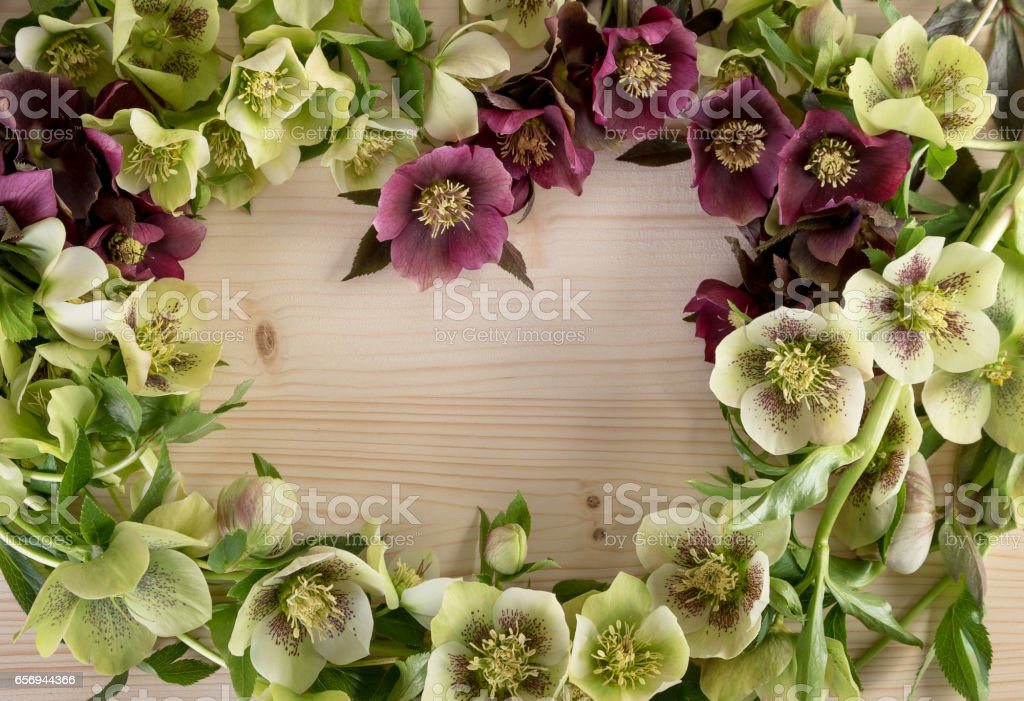 Creative flower arrangement pastel color on natural wooden background. Top view, text space stock photo