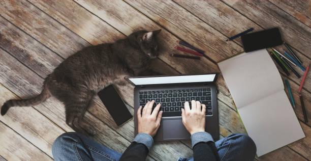 Creative home work space work from home concept girl with cat picture id1212365428?b=1&k=6&m=1212365428&s=612x612&w=0&h=k5olilpyd4k  icqqk6aybkzeyry43knlwjlvbdiwvg=