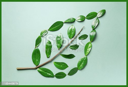 Creative layout. Ecology logo. Organic green leaf made of leaves. Flat lay. Eco friendly planet and sustainable environment concept. Think green, eat clean.