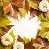Creative layout made of autumn maple leaves and pumpkins on white background. Flat lay, top view. Autumn frame. Nature concept.