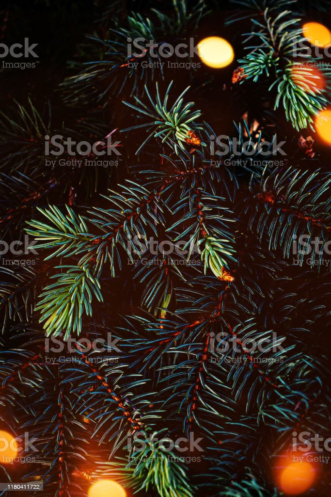 creative layout made of christmas tree branches with abstract golden picture id1180411722