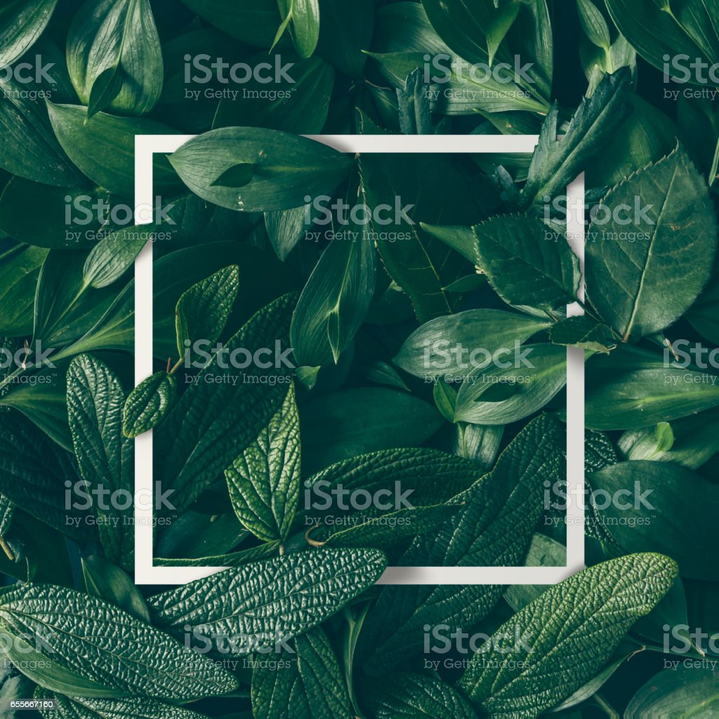 Creative layout made of flowers and leaves with paper card note. Flat lay. Nature concept stock photo