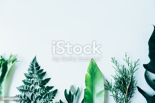 istock Creative layout made of green leaves. Flat lay. Nature concept 846586886