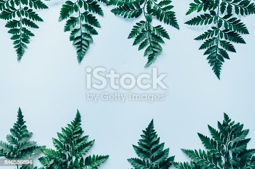 istock Creative layout made of green leaves. Flat lay. Nature concept 846586894