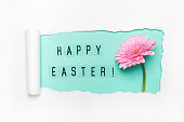 Creative layout made of torn hole, Happy Easter text and pink gerbera flower. Happy easter concept.