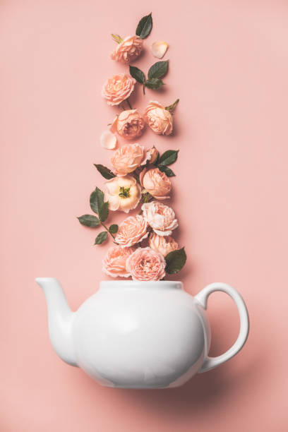 Creative layout made of whte tea pot with orange roses on pink background stock photo