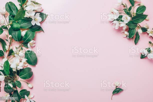 Creative layout with blooming apple tree on a pink background flat picture id1133792571?b=1&k=6&m=1133792571&s=612x612&h= t2r5ulnwzofqat phrbvyz6qakpllb6v8rfsn7bdkc=