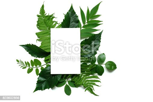 istock Creative layout with purple flowers, leaves and blank white greeting card 823602856