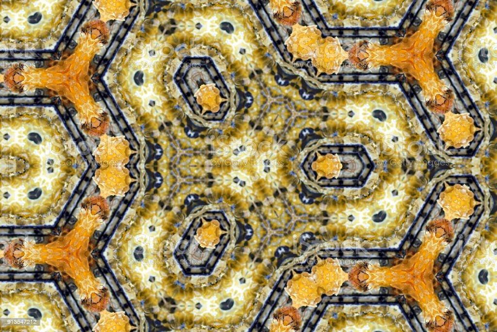 Inspiré par les abeilles & ruches créatifs Mandalas - Photo
