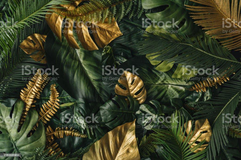 創造的な自然の背景。金と緑の熱帯ヤシの葉。 - アイデアのロイヤリティフリーストックフォト
