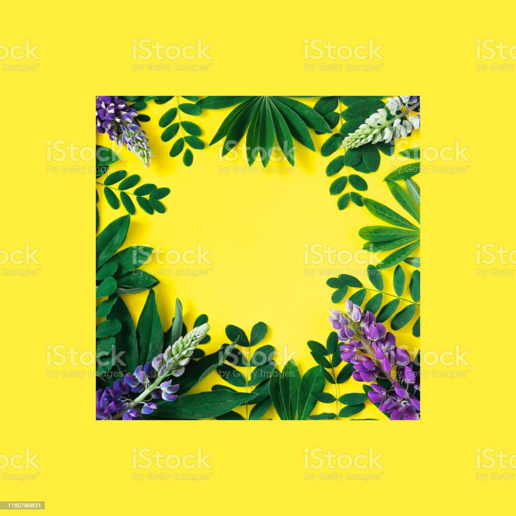 Creative Nature Frame Made Of Tropical Leaves And Flowers On A Yellow Background Flat Lay Summer Concept Stock Photo Download Image Now Istock Encapsulated postscript eps (.eps ) vector illustration graphic art design format author tropical nature background blossom flowers leaves decor. https www istockphoto com photo creative nature frame made of tropical leaves and flowers on a yellow background gm1160789831 317848618