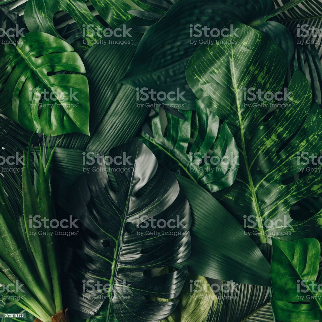 Creative nature layout made of tropical leaves and flowers. Flat lay. Summer concept. stock photo