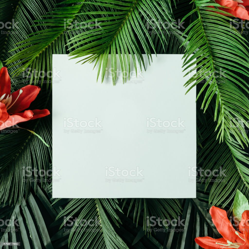 Creative Nature Layout Made Of Tropical Leaves And Flowers With