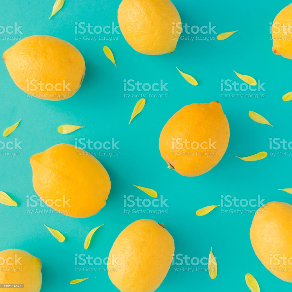 Creative summer pattern made of lemons and yellow flower petals on bright blue background. Fruit minimal concept. stock photo