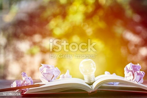 istock Creative thinking, idea, business concept : Light bulb put on open notebook with crumpled papers and pencil on wooden table with green nature as background. Conceptual business thinking and copy space 1013802724