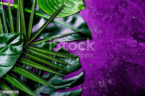 istock Creative tropical leaves background. Trandy tropical leaves on ultra violet slate background - color of the year 2018. Top view, copy space 999689128