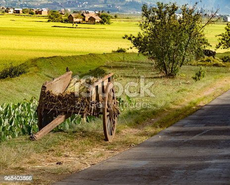 istock Creative variety of wooden carts (pousse pousse) powered either by human or zebu (oxen), along the legendary national route 7, south of Tana., Madagascar, 958403866