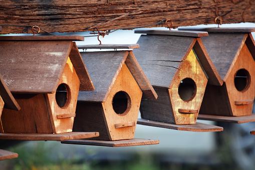 creative wooden bird house background
