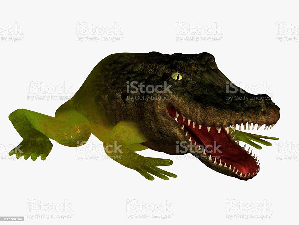 Creature stock photo