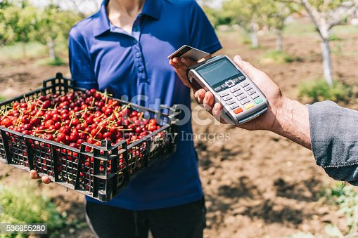 Woman making a contactless payment with a credit card for a crate of cherries.