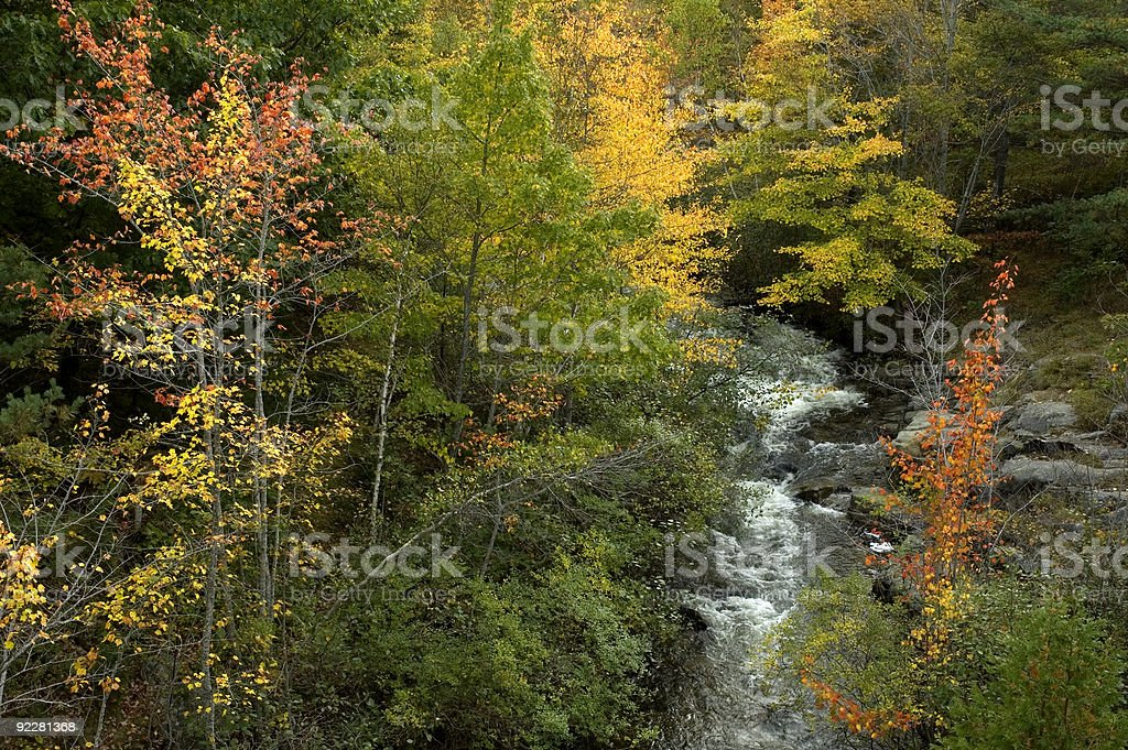 Creek, Acadia NP, ME stock photo