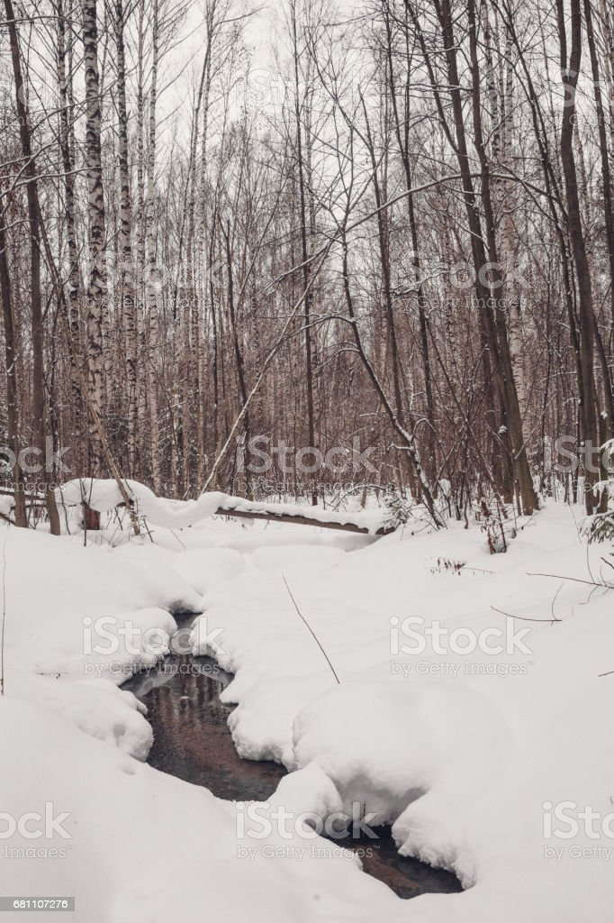 Creek among  snow in spring forest royalty-free stock photo