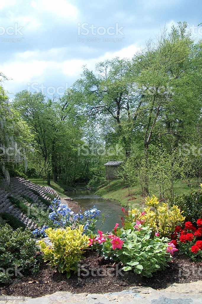 Creek and Flowers stock photo